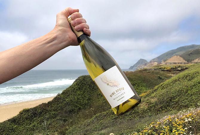 Wine Spots Monterey vineyard